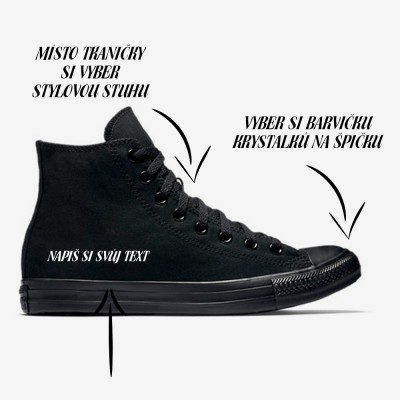 Converse Chuck Taylor All Star 3310 black